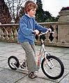 Kinderlaufrad.jpg