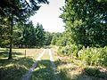 Knudshoved Odde - panoramio (5).jpg