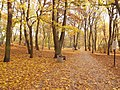 Kołobrzeg, Park Nadmorski jesienią - panoramio.jpg