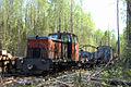 Kobrinskaya narrow gauge railway (Kobrinskaya railway) 6.jpg