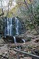 Koleshino vodopad.jpg