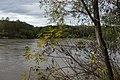 Kuban River in Ubezhenskaya, Russia.jpg