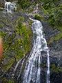 Kuranda QLD 4881, Australia - panoramio (76).jpg