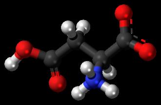 Aspartic acid - Image: L Aspartic acid zwitterion 3D balls