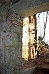 LSG Calenberger Leinetal - Alt Calenberg - Ruinen (7).jpg