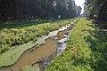 LSG Forst Rundshorn nahe Würmseeweg IMG 9896.jpg