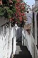 La Palma - Santa Cruz - Calle Blas Simón 03 ies.jpg