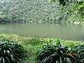 Laguna El Tabacal, La Vega - panoramio.jpg