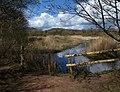 Lake, Dawlish Warren - geograph.org.uk - 1252183.jpg