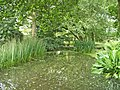 Lake in Japanese Garden, Trent Park, N14 - geograph.org.uk - 316817.jpg