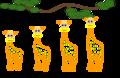Lamarckian inheritance- Giraffes.png