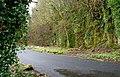 Lane to Glenoe Glen (3) - geograph.org.uk - 708481.jpg