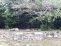 Large Cabin Ruins - panoramio.jpg