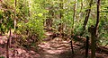 Lawrence County, AL, USA - panoramio.jpg