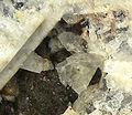 Lawsonite-Glaucophane-257290.jpg