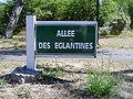 Le Touquet-Paris-Plage (Allée des Eglantines).JPG