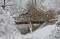 Lebenswertes chemnitz winter stadtpark schneebruch holz bruecke 1.jpg
