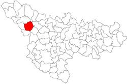 Vị trí của Lenauheim