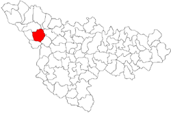 Location of Lenauheim in Timiș County