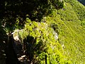 Levada 25 Fontes, Madeira, Portugal, June-July 2011 - panoramio (31).jpg