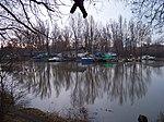 Libeňský ostrov, Stará plavba, špice ostrova.jpg