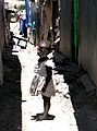Little girl in slum alley - Kenya.jpg