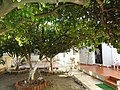 Lixouri, Greece - panoramio (1).jpg