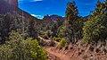 Llama Trail (28246921699).jpg