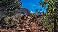 Llama Trail (39316137964).jpg