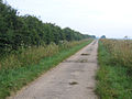 Lockspit Hall Drove, Smithey Fen, Cottenham, Cambs - geograph.org.uk - 275614.jpg