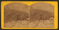 Looking into Cottonwoood Kanyon (Canyon), from Mount Emma, from Robert N. Dennis collection of stereoscopic views 2.png