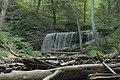 Lower Tews Falls - panoramio.jpg