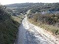Lullington Heath - clearing work in progress - geograph.org.uk - 1561659.jpg