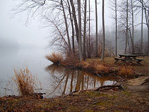 Lums Pond State Park - A view of a picnic area along the edge of Lums Pond