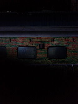 MAS Duronto gleaming in the dark.jpg