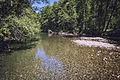 MRNP — Ohanapecosh River — 003.jpg