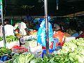 Male-mercat2.jpg