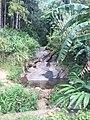 Matale, Sri Lanka - panoramio (13).jpg