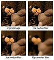 Median filter example.jpg