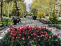 Mellat Park Tehran.jpg
