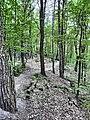Mikolow, Poland - panoramio (178).jpg