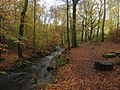Mill Beck (Windermere).jpg