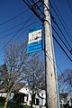 Mineola Memorial Pk td 50 - The Friendly Village.jpg