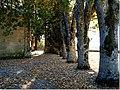 Montalegre (Portugal) (298043369).jpg