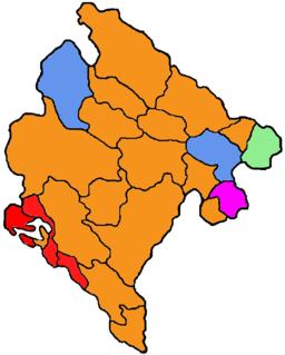 2016–18 Montenegrin municipal elections