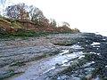 More of Bromborough shore - geograph.org.uk - 292449.jpg