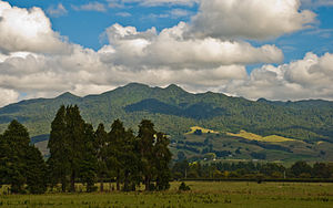 Mount Pirongia, 4. April 2008