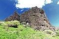 Mountain Ara.jpg