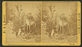 """Mrs. M. A. Maxwell and some of the animals in her """"Rocky Mountain Museum."""", from Robert N. Dennis collection of stereoscopic views 2.png"""