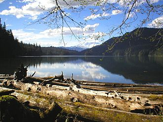 Packwood Lake - Mount Rainier from the southeast end of the lake